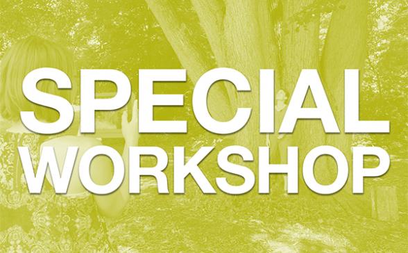 Image - Special Workshop