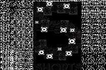 5 Shorts