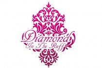 Diamond In The Ruff logo