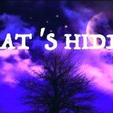 What's  Hidden