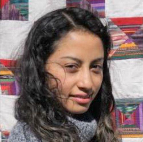 Liliana Velãsquez author of Dreams and Nightmares/Sueños y Pesadillas