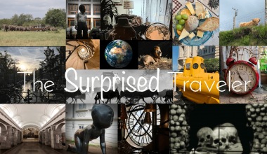 The Surprised Traveler